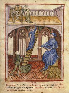 Tacuinum sanitatis d'Ibn Butlān, BNF Paris